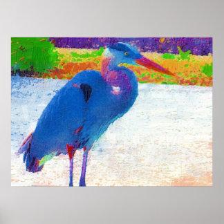 Extracto de la garza de gran azul poster