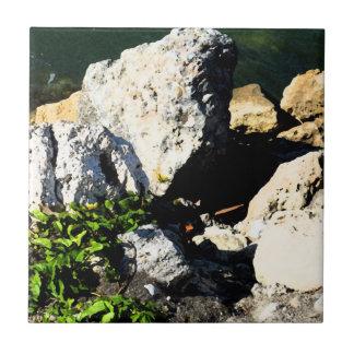 Extracto de la roca con la planta verde painterly azulejo cuadrado pequeño