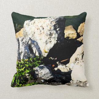 Extracto de la roca con la planta verde painterly cojin