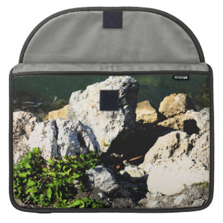 Extracto de la roca con la planta verde painterly fundas para macbooks