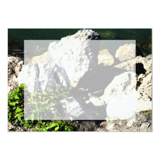 """Extracto de la roca con la planta verde painterly invitación 5"""" x 7"""""""