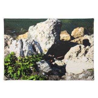 Extracto de la roca con la planta verde painterly manteles individuales