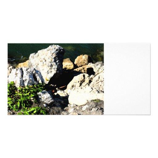 Extracto de la roca con la planta verde painterly tarjetas fotograficas personalizadas