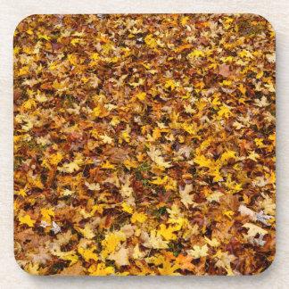 Extracto de las hojas de otoño posavasos