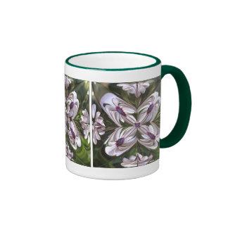 Extracto de Osteospermum Tazas De Café
