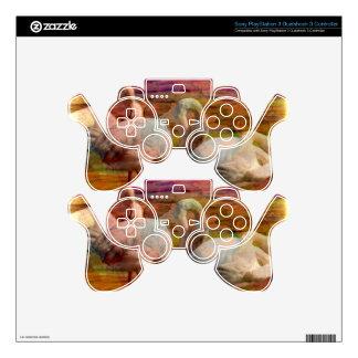 Extracto del arte del flamenco mando PS3 skins