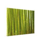 Extracto del bambú impresiones en lona estiradas