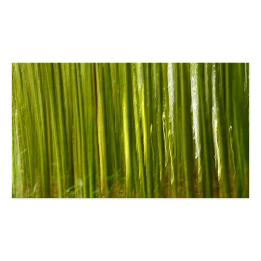 Extracto del bambú tarjetas de visita
