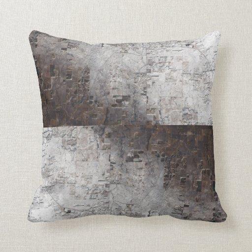 Extracto del gris y del espacio de Brown Cojines