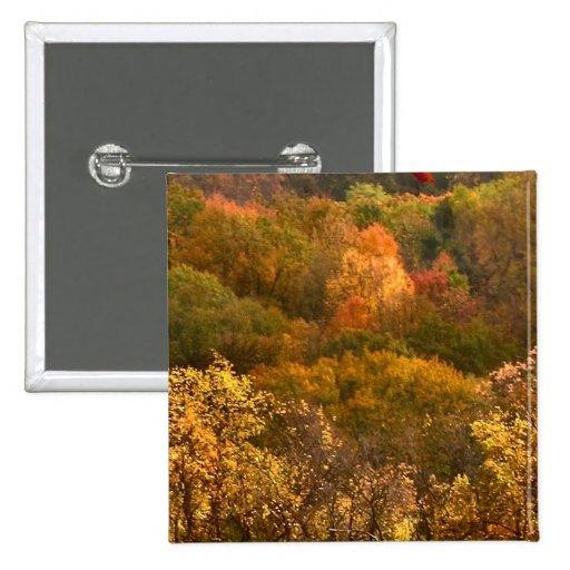 Extracto del otoño pin