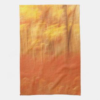 Extracto hermoso de la falta de definición del oto toalla de cocina