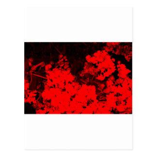 Extracto rojo tarjeta postal