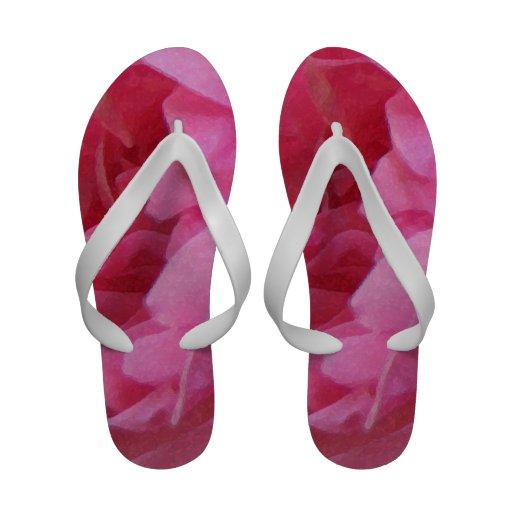 Extracto rosado del pétalo color de rosa del vinta sandalias de playa