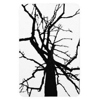 Extracto superior del árbol imanes de vinilo