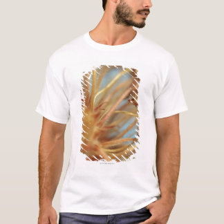Extreme close-up of dried plant outdoors T-Shirt