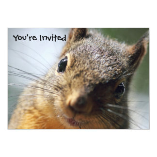 Extreme Closeup Squirrel Picture 5x7 Paper Invitation Card