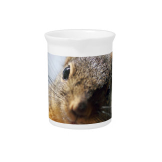 Extreme Closeup Squirrel Picture Beverage Pitchers