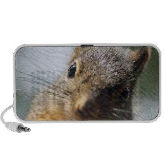 Extreme Closeup Squirrel Picture Portable Speaker