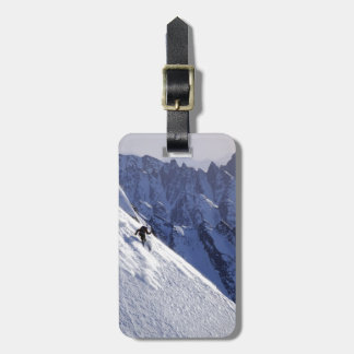 Extreme Free Skiing in Alaska Tags For Luggage
