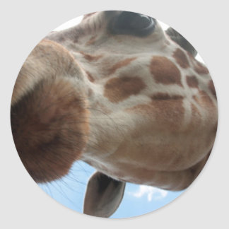 Extreme Giraffe Classic Round Sticker