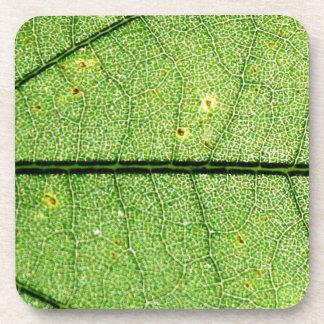 Extreme Green Leaf Beverage Coaster