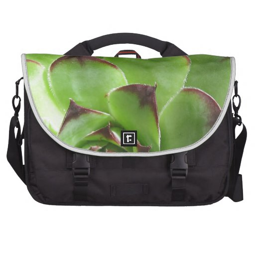 Extreme Hen And Chicks Commuter Bags