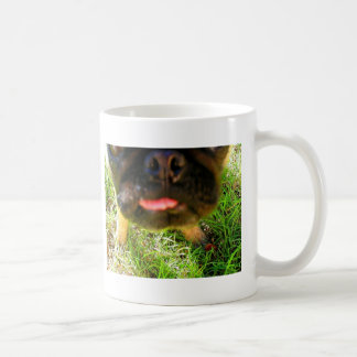 Extreme Pug CloseUp Coffee Mug
