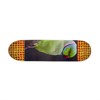 Extreme Sports Tropics Skateboard