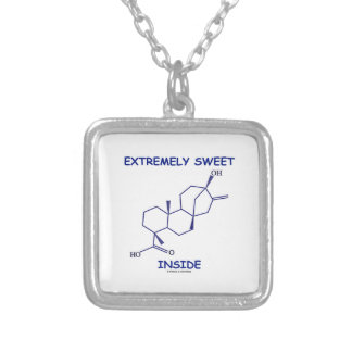 Extremely Sweet Inside (Steviol Molecule) Square Pendant Necklace