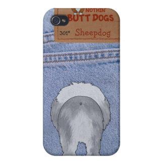 Extremo azul del perro pastor de Jean iPhone 4 Carcasas