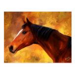 Extremo de los veranos - arte del Quarterhorse Postales