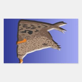 Extremo del pato pegatina rectangular