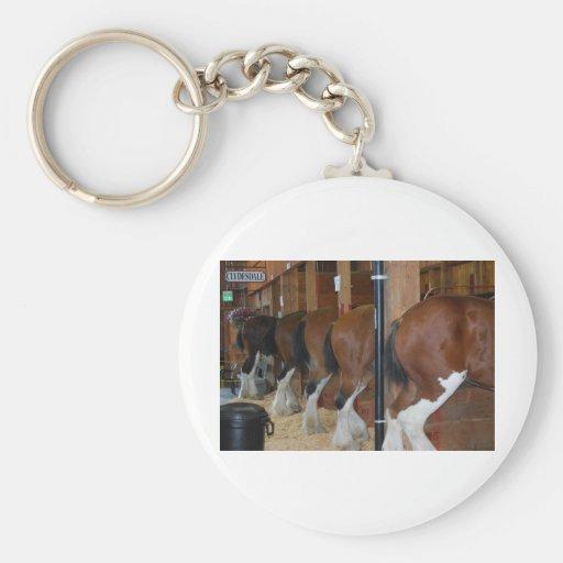 Extremos posteriores de los caballos llavero redondo tipo pin