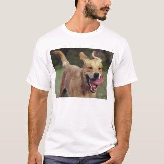 Exuberance T-Shirt