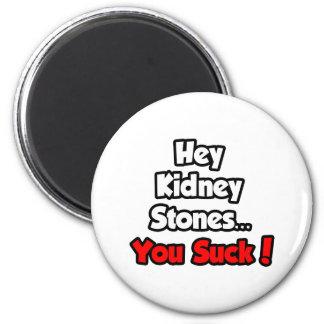 ¡Ey piedras de riñón… que usted chupa! Imán Redondo 5 Cm