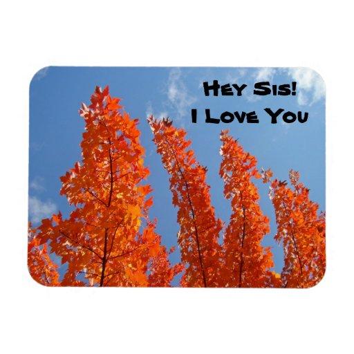 ¡Ey SIS! Te amo árboles flexibles del otoño de los Iman Rectangular