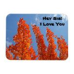 ¡Ey SIS! Te amo árboles flexibles del otoño de los Imán Foto Rectangular