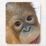 Ey, soy una foto linda del orangután alfombrillas de raton