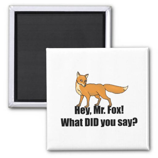 Ey You de Sr. Fox What DID dice divertido Iman De Frigorífico