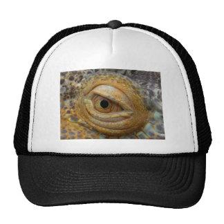 eye-854 gorras de camionero