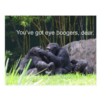 Eye boogers Dear monkey Postcard