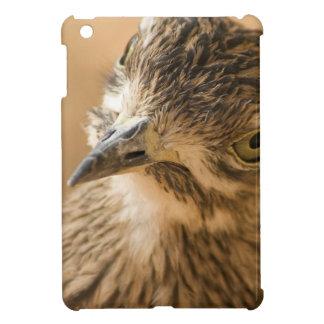 Eye Contact iPad Mini Cover