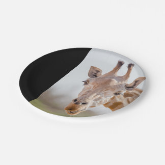 Eye contact with giraffe paper plate