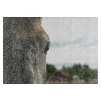 Eye Of A Dapple Gray Horse Animal Cutting Board