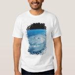 Eye of a Hurricane Shirt