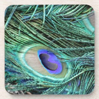 Eye Of A Peacock Feather Beverage Coaster
