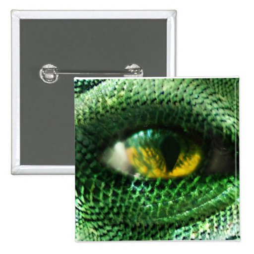 Eye of a.. pins