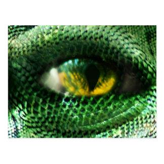 Eye of a.. postcard