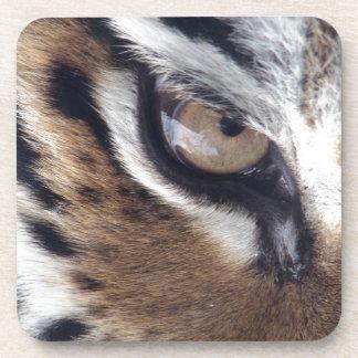 Eye of a Tiger Beverage Coaster