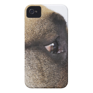 Eye of Great Dane iPhone 4 Case